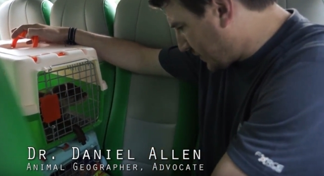 01 Dr Daniel Allen Animal Realities