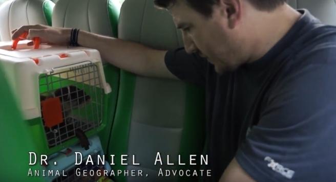 01 Dr Daniel Allen Animal Realities