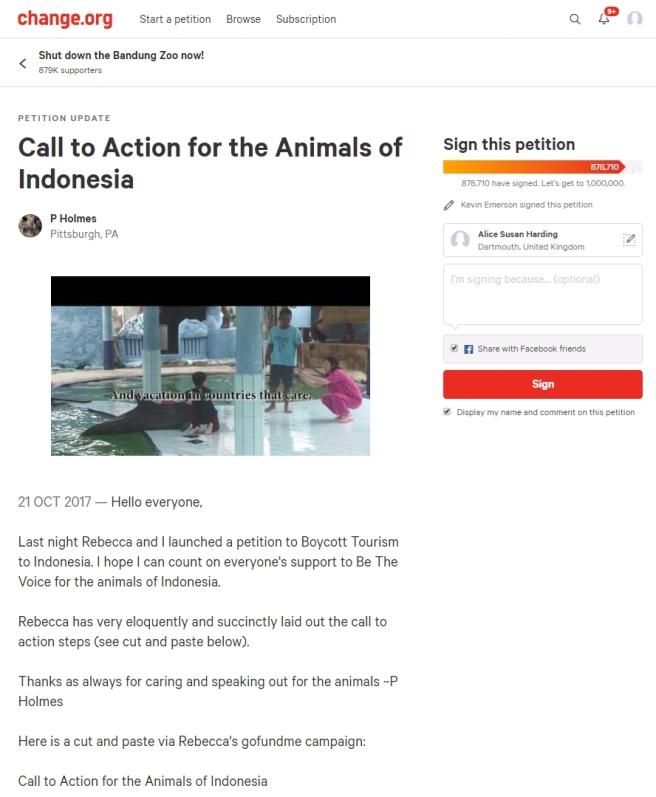 12 Rebecca Rodriguez Animal House Animals of Indonesia
